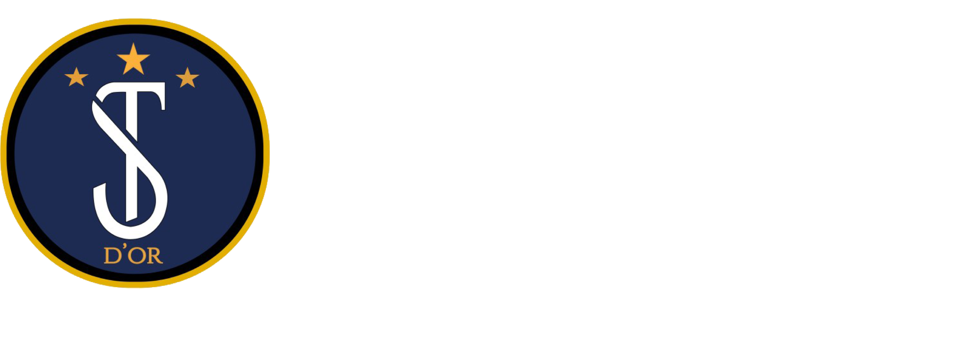豊田市でサッカー教室ならサッカースクールSTD'OR FC