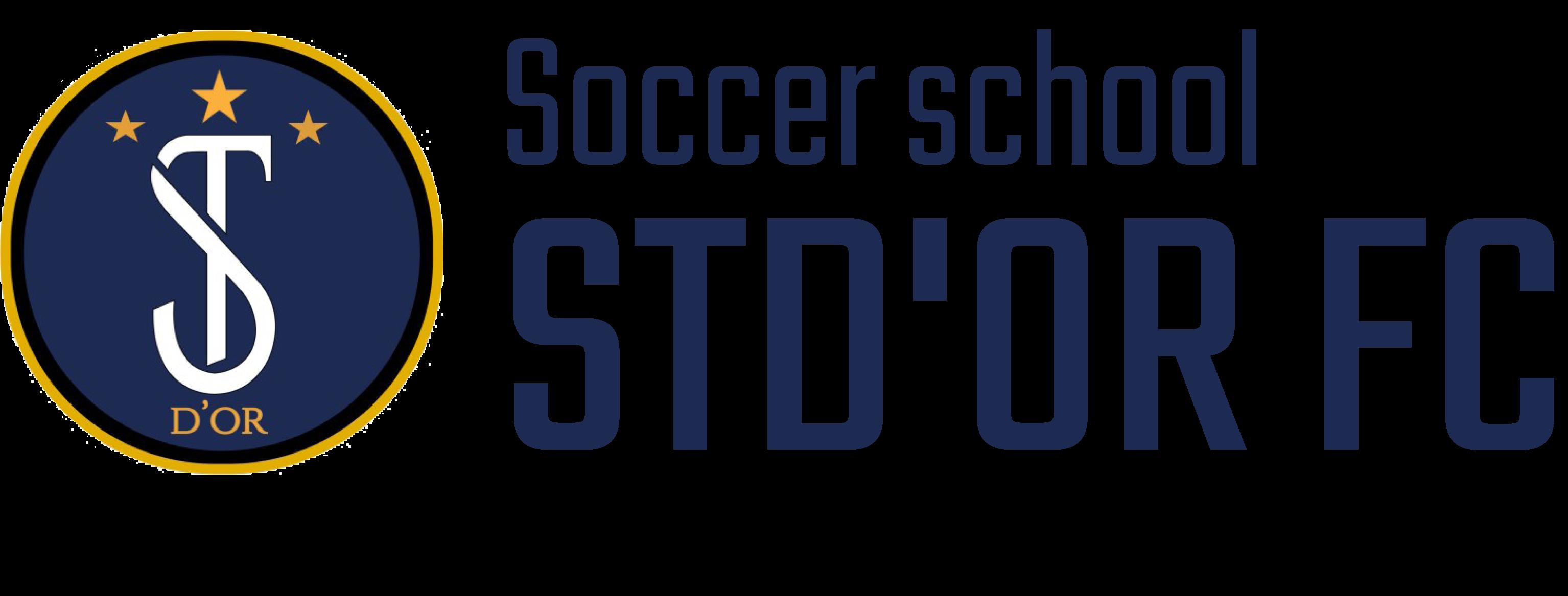 豊田市・碧南市でサッカー教室ならサッカースクールSTD'OR FC